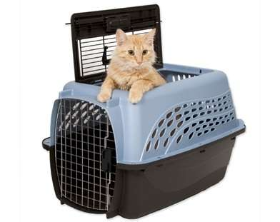 как выбрать сумки переноски для кошек